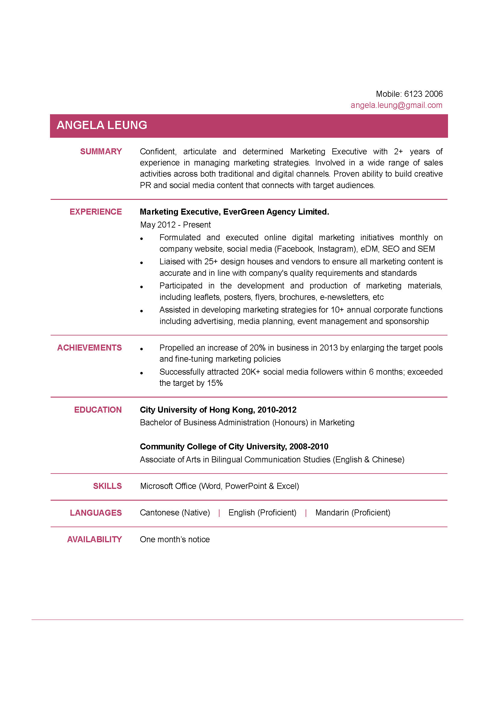 marketing executive cv